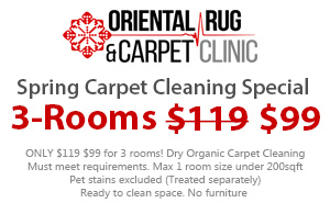 Spring Carpet Cleaning 3-Room special